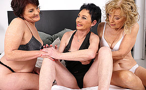 Three mature lesbians licking their pussies wet
